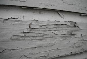 lead paint_3
