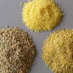Rice, Yellow Rice, Brown Rice