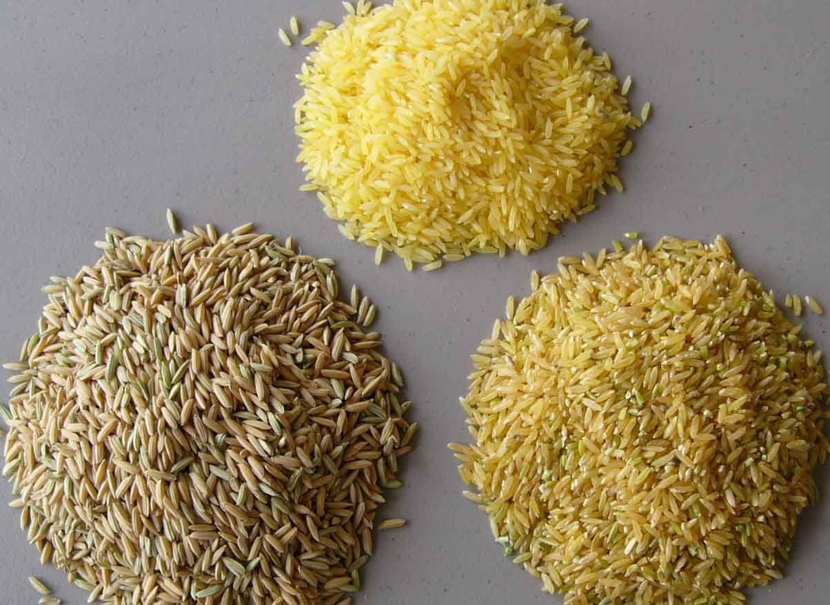 White Rice Yellow Rice Brown Rice The Differences