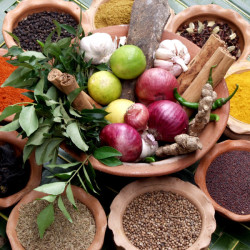 Herbal Medicines and Holistic Healing
